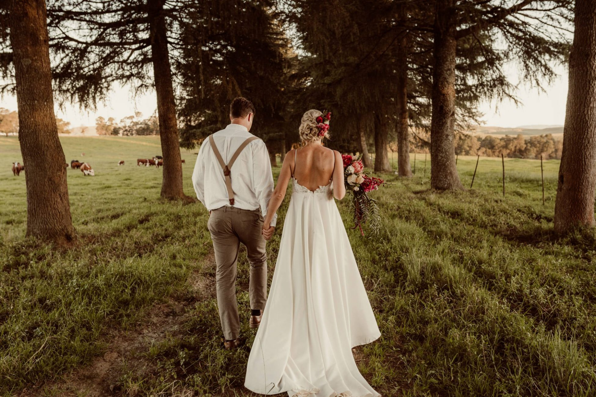 sunset-bellwood-stud-kzn-midlands-nature-wedding-ceremony-cr8tiveduo-destination-photography-videography-cr8tive-duo-couple-newly-weds-forest-cows-fields